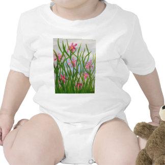 Wild Iris's.JPG Baby Creeper