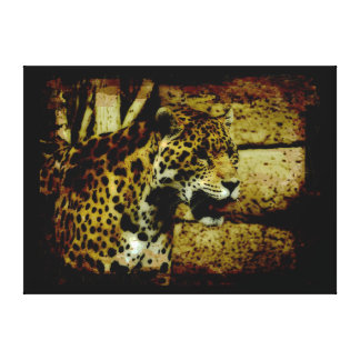 Wild Jaguar Spotted Panther Animal Lover Canvas Print