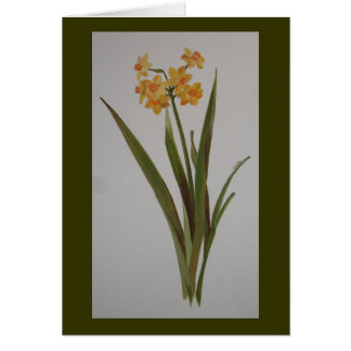 Wild Jonquil Greeting Card