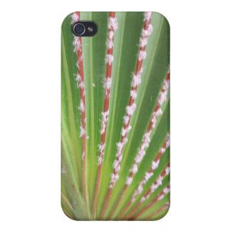 WILD LIFE iPhone 4/4S CASES