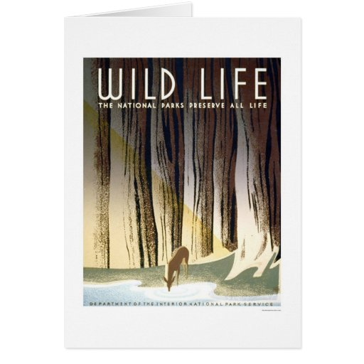 Wild Life National Park 1940 WPA Greeting Cards
