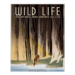 Wild Life National Parks Preserve All Life Poster