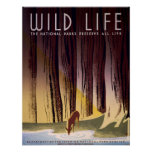 Wild life The National Parks Vintage WPA Poster
