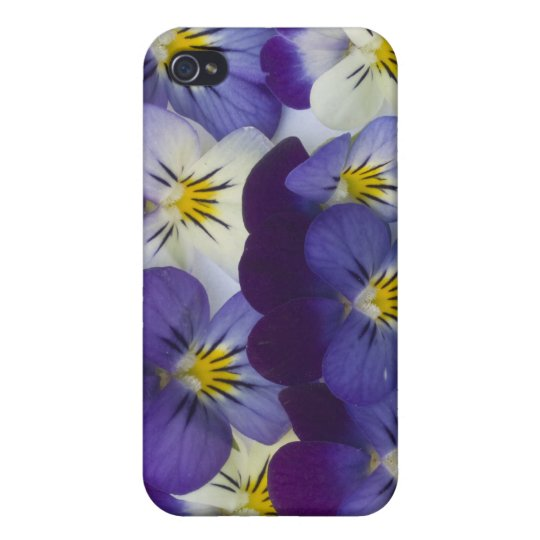 wild lillies iPhone 4/4S cover