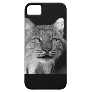 Wild Lynx IPhone case iPhone 5 Cover