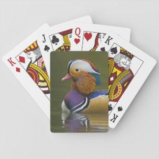 Wild Mandarin Duck Aix galericulata) on dark Playing Cards