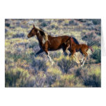 Wild Mare and Foal Running, Painterly Greeting Card