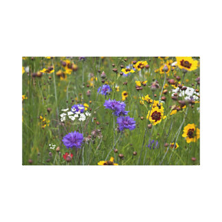 Wild Meadow Flowers Canvas Print