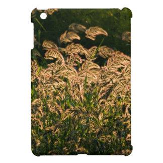 Wild Millet (Panicum Sp.) Growing In Wetland iPad Mini Case