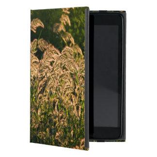 Wild Millet (Panicum Sp.) Growing In Wetland iPad Mini Cover