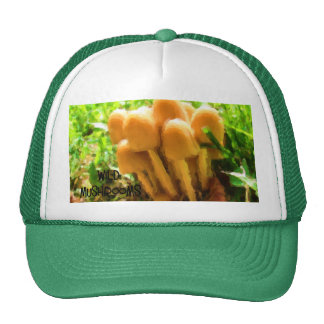 Wild Mushroom Cap