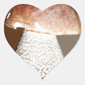 wild mushroom heart sticker