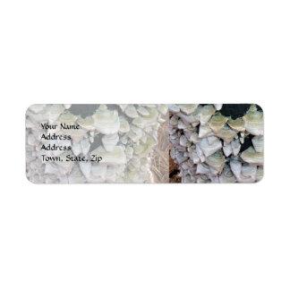 Wild Mushrooms Return Address Label