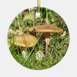 Wild Mushrooms Round Ceramic Decoration