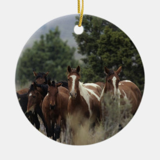Wild Mustang Horses 2 Christmas Ornament