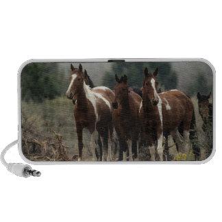Wild Mustang Horses 7 iPhone Speaker