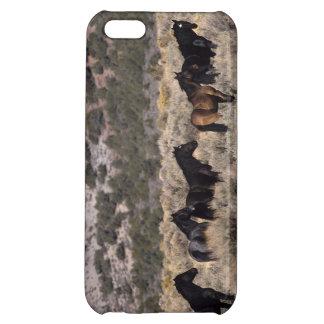 Wild Mustang Horses in the Desert 2 Case For iPhone 5C