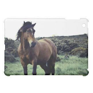 Wild Mustang iPad Case