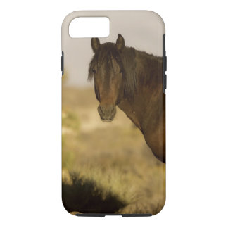 Wild Mustang stallion, Wheeler Peak herd, Cold iPhone 8/7 Case
