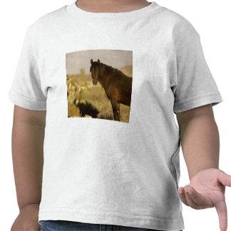 Wild Mustang stallion Wheeler Peak herd Cold T-shirts
