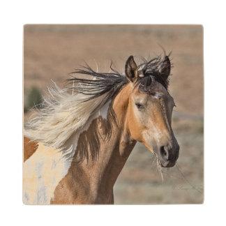 Wild Mustang Wood Coaster