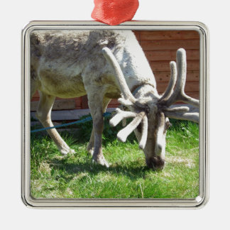 wild norway christmas ornament