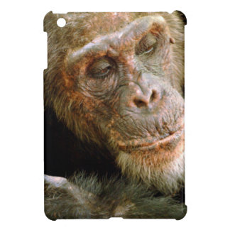 Wild Old Male Chimpanzee (Pan Troglodytes) Cover For The iPad Mini