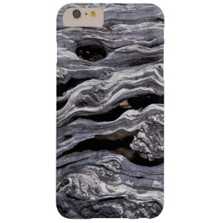 Wild Olive Tree | Great Karoo, South Africa Barely There iPhone 6 Plus Case