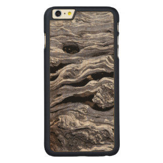 Wild Olive Tree | Great Karoo, South Africa Carved Maple iPhone 6 Plus Case