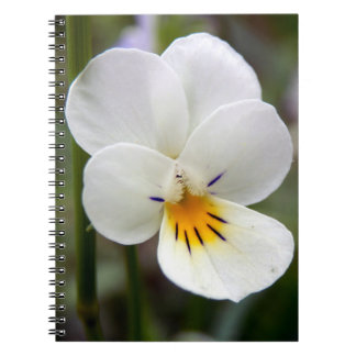 Wild Pansy Spiral Photo Notebook