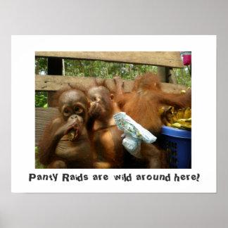 Wild Panty Raids Posters
