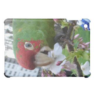 Wild Parrot iPad Mini Cases