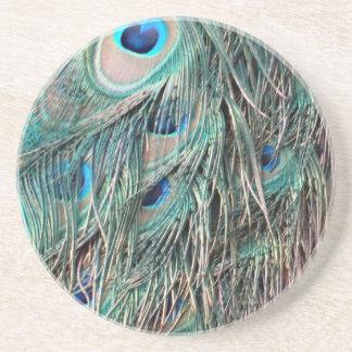 Wild Peafowl Feather Eyes Coaster