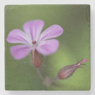 Wild Pink Flower Stone Coaster