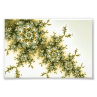 Wild Plant - Mandelbrot Fractal Art Photo Print
