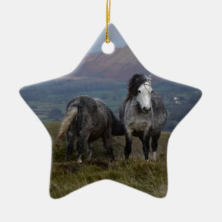 Wild Ponies Christmas Ornament