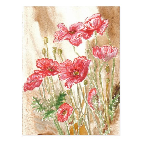 'Wild Poppies' Postcard