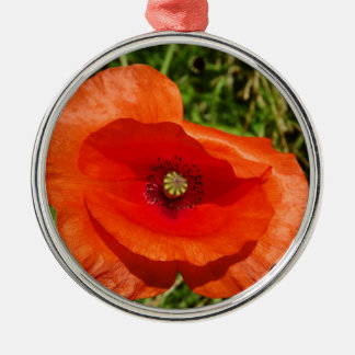 Wild poppy christmas ornament