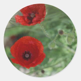 Wild Poppy Stickers