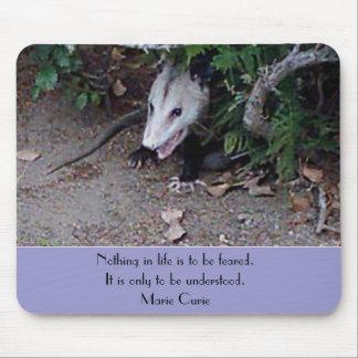 Wild Possum Mouse Pads