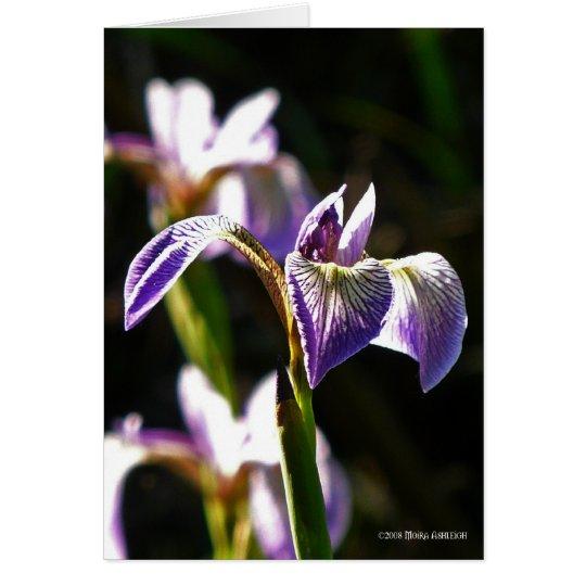 Wild Purple Card