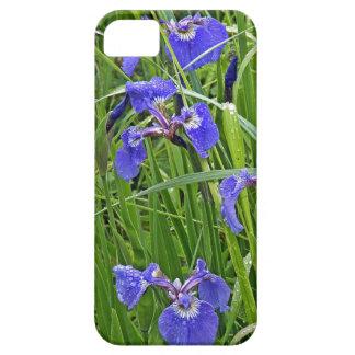 Wild Purple Iris iPhone 5 Case
