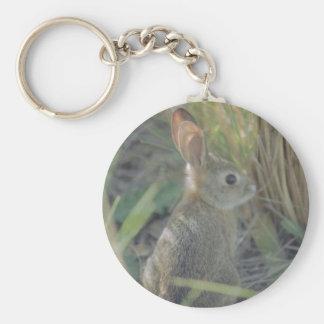 Wild Rabbit Basic Round Button Key Ring
