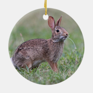 Wild Rabbit Christmas Ornament