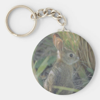 Wild Rabbit Key Ring