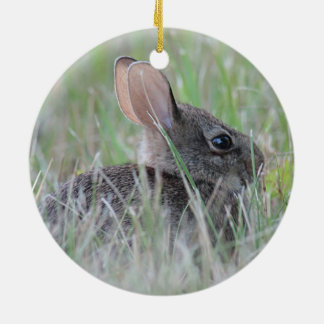 Wild Rabbit Round Ceramic Decoration