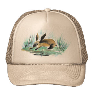 Wild Rabbit , Sumi-e Mesh Hats