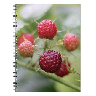 Wild Raspberries Spiral Notebook