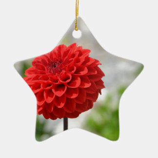 Wild red Dahlia Christmas Ornament