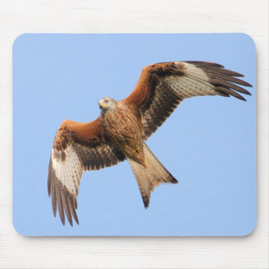 Wild Red Kites Mouse Pad